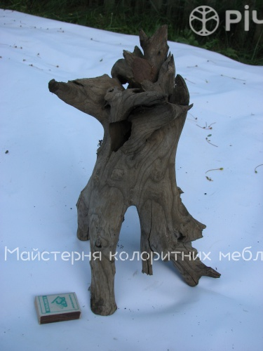 Коріння дерева що довго лежадо в воді - сировина для екодизайну.